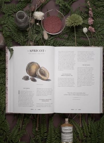 首部Buly著作正式抵台《An Atlas of Natural Beauty》,自然元素、完美的美容配方,傳遞世界各地的美麗秘密。NT$800。(英文原文) - 4